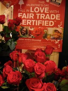 Fair Trade Roses